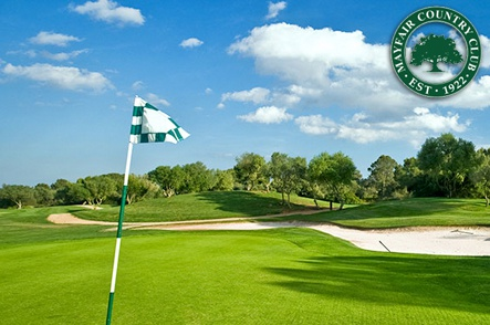 18 Holes with Cart and a 2-for-1 Draft Beer or Fountain Drink
